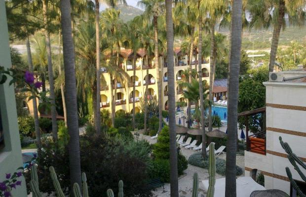 фото отеля Club Tropical Beach изображение №29