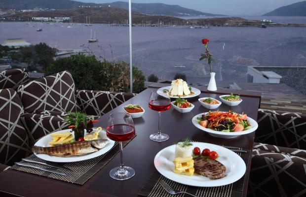 фотографии Royal Arena Resort & Spa (ex. Litera Royal Marin Resort; Medesa) изображение №32