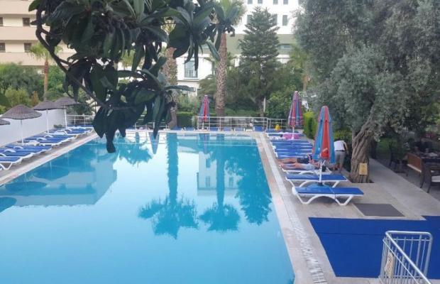 фотографии Adler Hotel изображение №4