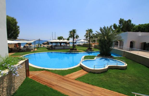 фото отеля Costa Luvi Hotel (ex. The Luvi Hotel; Club Oleal) изображение №21