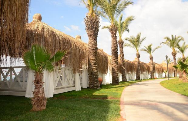 фотографии Paloma Grida Resort & SPA (ex. Grida Villagе) изображение №20