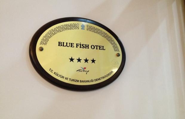 фотографии отеля Blue Fish изображение №19
