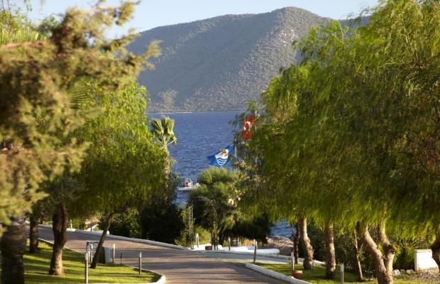 фотографии Bodrum Holiday Resort & Spa (ex. Majesty Club Hotel Belizia) изображение №20