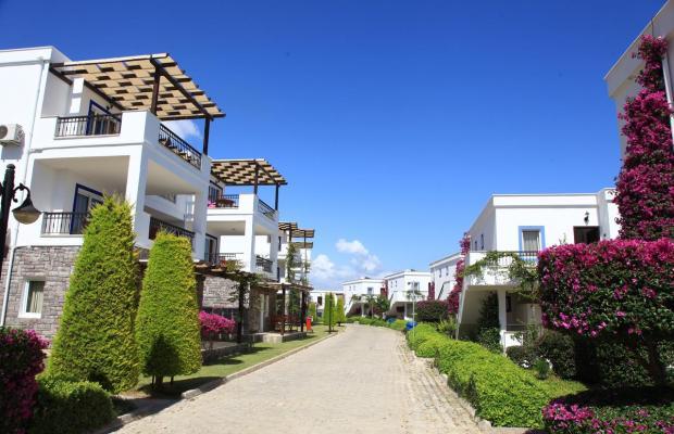 фото Aktur Residence изображение №38