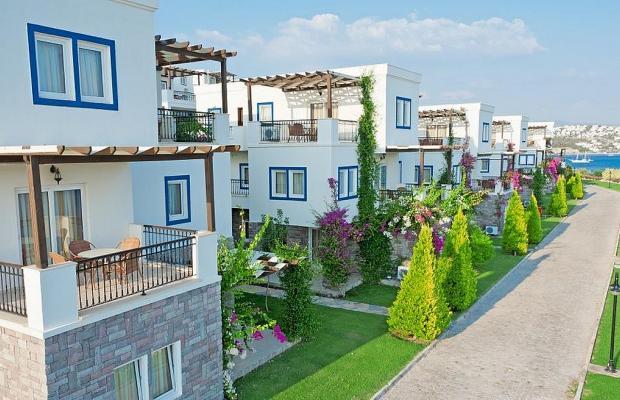 фото Aktur Residence изображение №2