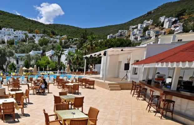 фото отеля Nish Bodrum Resort (ex. Caliente Bodrum Resort; Regal Resort) изображение №17