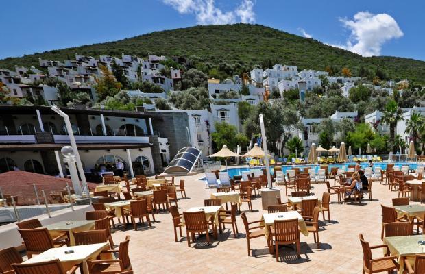 фото отеля Nish Bodrum Resort (ex. Caliente Bodrum Resort; Regal Resort) изображение №13