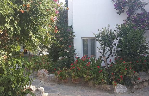 фотографии отеля Flora Safir Hotel изображение №7