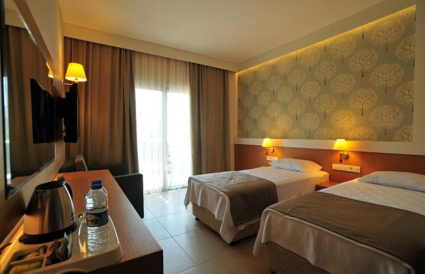фото отеля Dilekagaci Boutique Hotel & Beach изображение №53