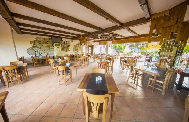 фото отеля Club Hotel Flora изображение №41