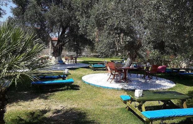 фотографии отеля Club Alisya Beach Hotel изображение №3
