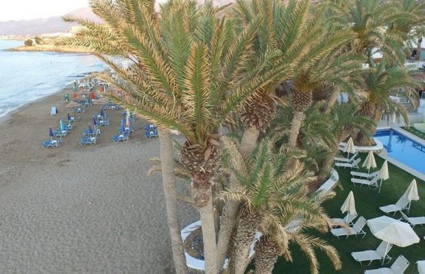 фото Palm Beach Hotel Stalis изображение №10