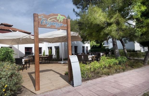 фото отеля Club Marco Polo изображение №21