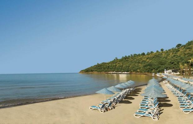 фотографии Paloma Pasha Resort изображение №28
