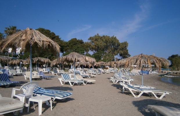 фото отеля Theodorou Beach Hotel изображение №17