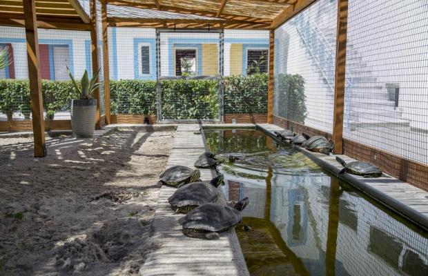 фотографии отеля Akti Dimis Hotel изображение №7