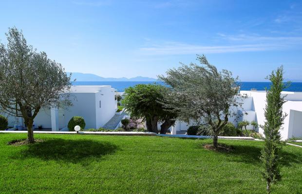 фотографии отеля Dimitra Beach Resort изображение №51