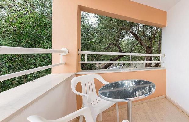 фотографии отеля Paradise Primavera Apartments изображение №19
