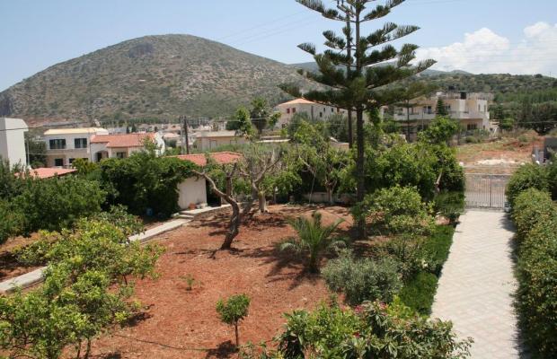фото отеля Villa Medusa изображение №13