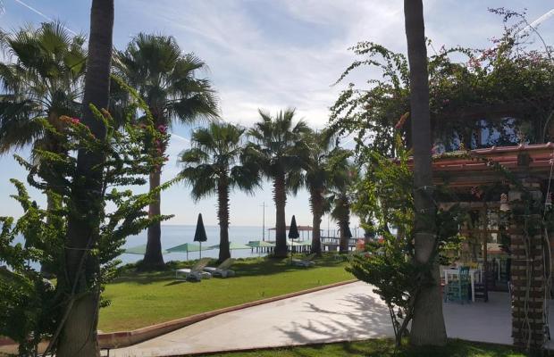 фото отеля Seagull Hotel изображение №9