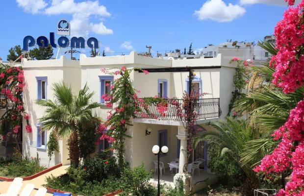 фотографии отеля Club Paloma Apartments изображение №15