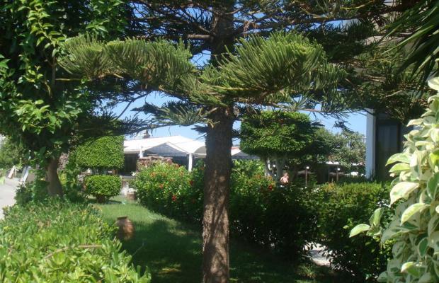 фото Tsampika изображение №14