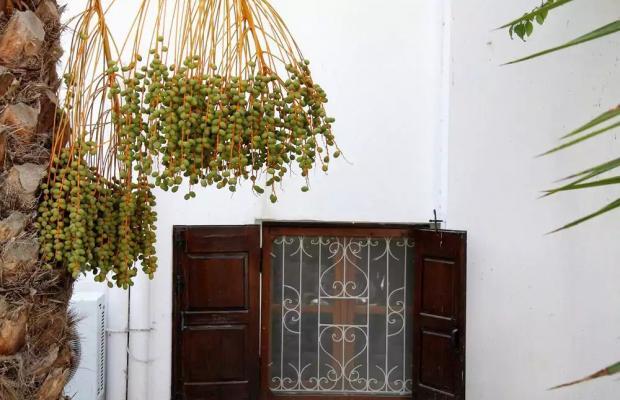 фотографии отеля Amaryllis изображение №11