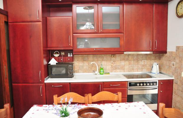 фотографии Family apartments in Dionisiou Beach изображение №8