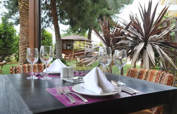 фотографии Hotel Kalloni изображение №24