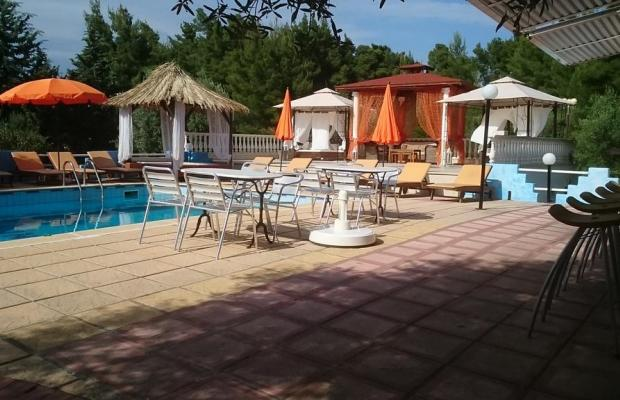 фотографии Villa Askamnia Beach Aparthotel изображение №4