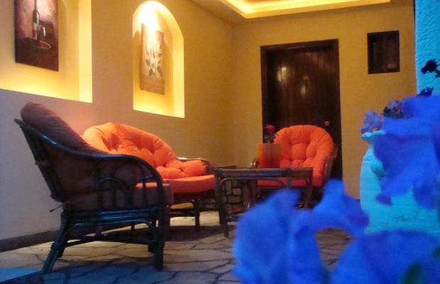 фотографии отеля Petunia изображение №3