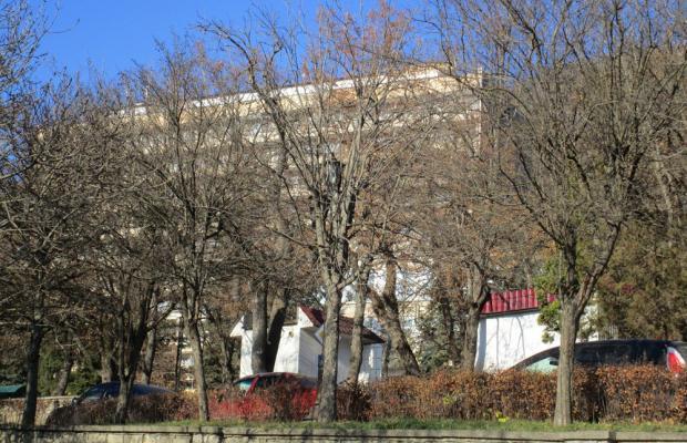 фото Здоровье (Zdorove) изображение №6