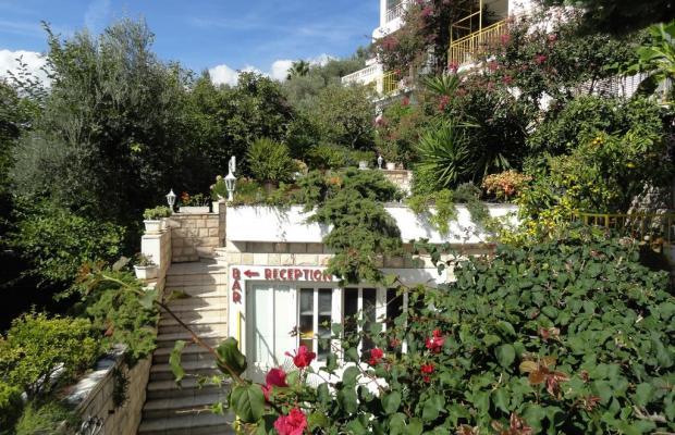 фотографии отеля Sun Rose Apart (ex. Villa Hara)  изображение №15