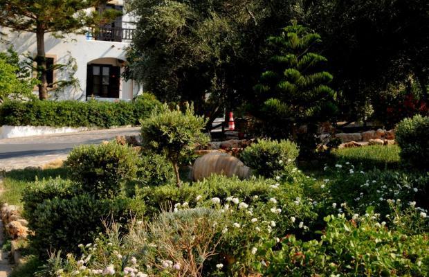 фотографии отеля Hersonissos Village изображение №11