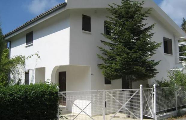 фотографии Villa Lotos изображение №8