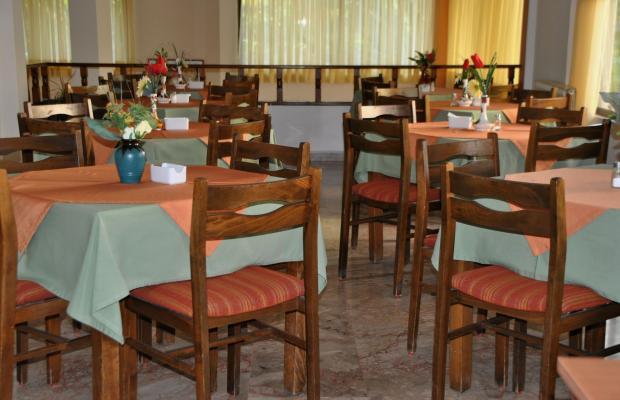 фотографии отеля Yiorgos изображение №31