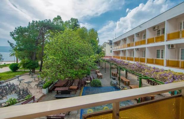 фотографии Hotel Mimoza изображение №12