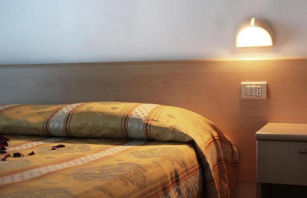 фотографии отеля New Primula изображение №11