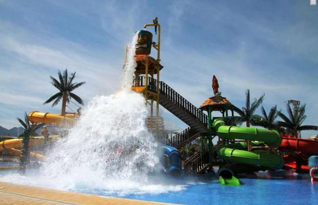 фотографии Albir Garden Resort изображение №12