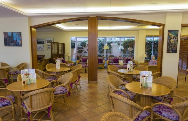фотографии Hotel Les Palmeres (ex. Best Western Les Palmeres) изображение №12