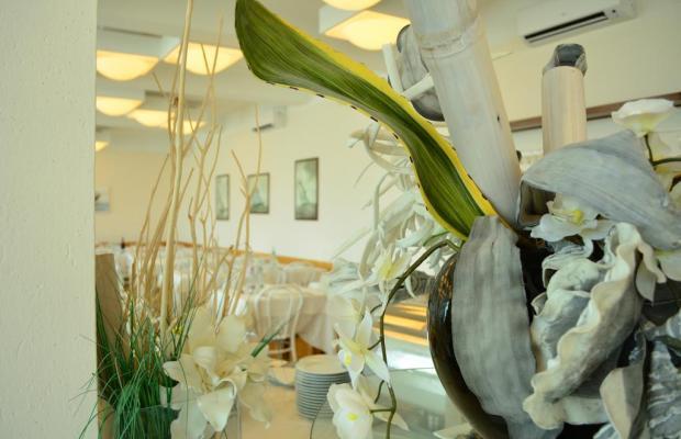 фотографии отеля Delfino изображение №3