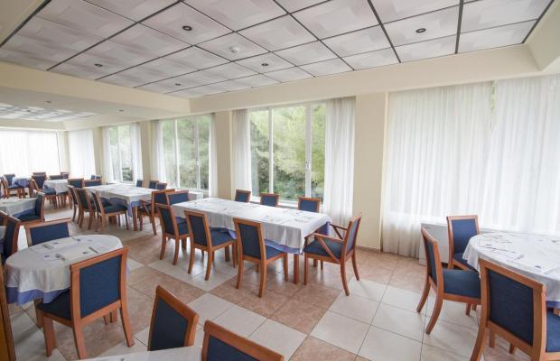 фотографии отеля AzuLine Hotel Bahamas (ex. Vincci Bahamas) изображение №31
