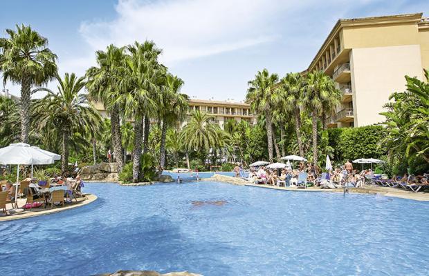 фотографии отеля Allsun Hotel Estrella & Coral de Mar Resort (ex. Estrella Coral de Mar Resort Wellness & Spa) изображение №3
