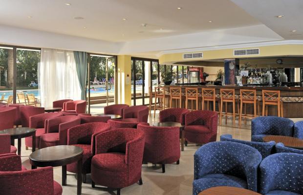фотографии отеля Globales Playa Santa Ponsa (ex. Acorn Playa Santa Ponsa) изображение №15