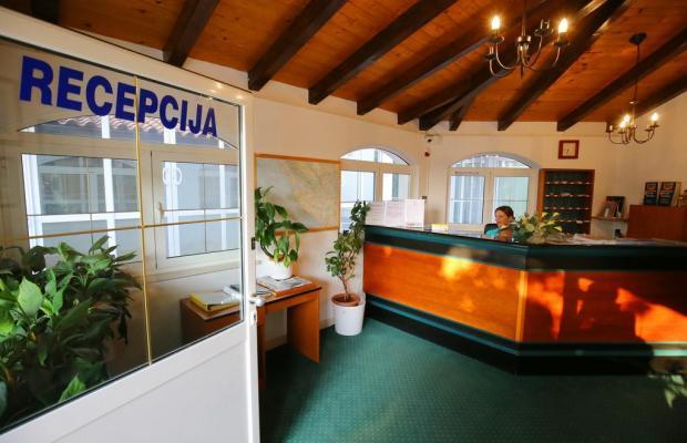 фотографии Hotel Lucija изображение №20