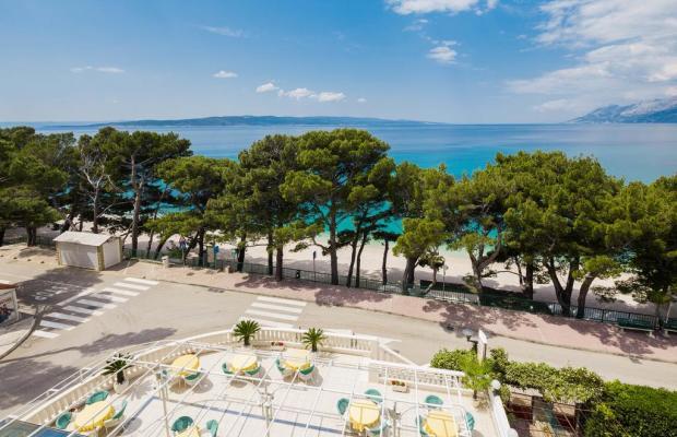 фотографии Hotel Villa Bacchus изображение №20
