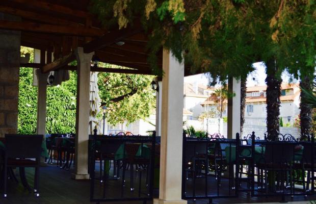 фото отеля Villa Diana изображение №5