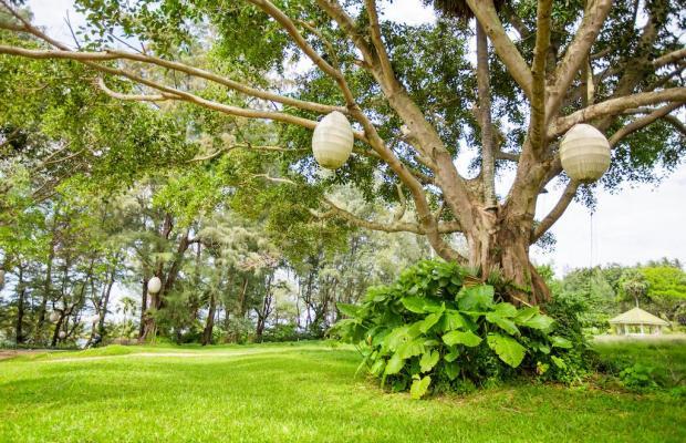 фото The Chava Resort изображение №6