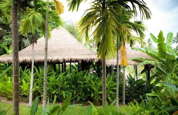 фотографии отеля The Vijitt Resort Phuket изображение №7