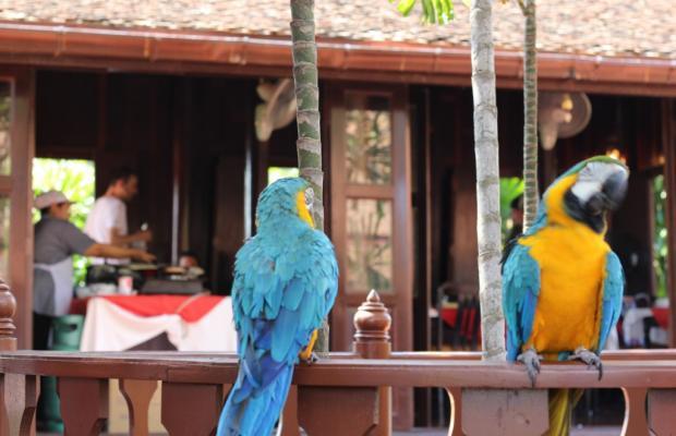 фотографии отеля Sugar Hut Resort изображение №7